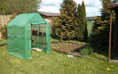 Bio Gemüse anpflanzen – Tag 17: Es wuchert und das kleine Gewächshaus